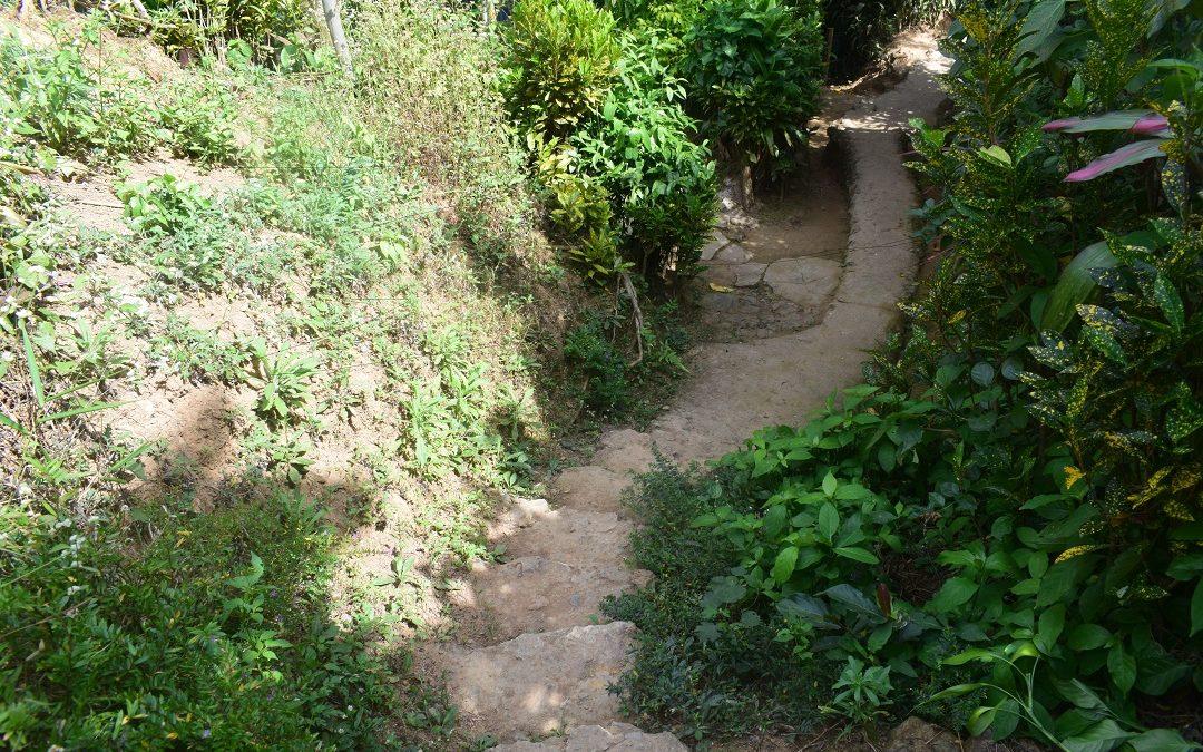 Gumatdang Eyed Pathway Rehab